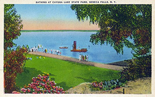 (Seneca Falls, New York - Swimming Scene at Cayuga Lake State Park (24x36 Giclee Gallery Print, Wall Decor Travel Poster) )