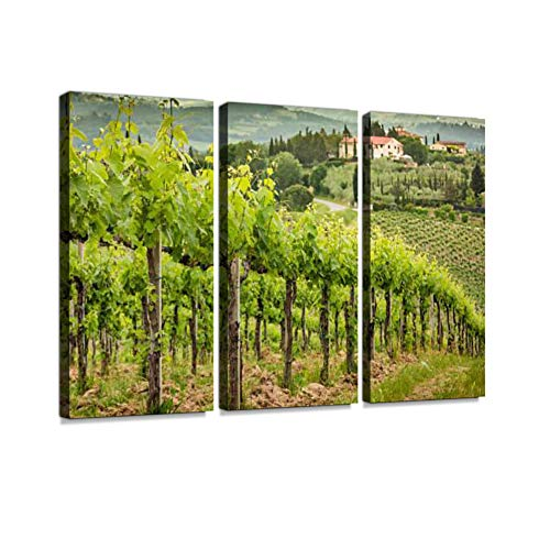 7houarts Field of Vines in The Countryside of Tuscany Canvas Wall Artwork Poster Modern Home Wall Unique Pattern Wall Decoration Stretched and Framed - 3 Piece