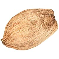 Fresh Coconut - Medium Pack