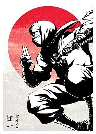 Amazon.com: Kenichi - Shadow Clan Ninja - Matte TCG Card ...