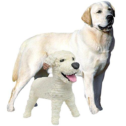 Pinatas Medium Custom Dog, Clone Your Pet - Labrador Retriever, German Shepherd, Beagle, Bulldog, Yorkie or Any Other Breed ()