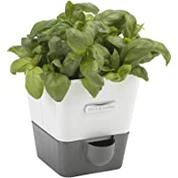 Cole & Mason Self-Watering Herb Keeper