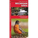 Michigan Birds: A Folding Pocket Guide to Familiar Species (A Pocket Naturalist Guide)