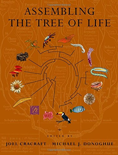 Avalon Tree Of Life - 4