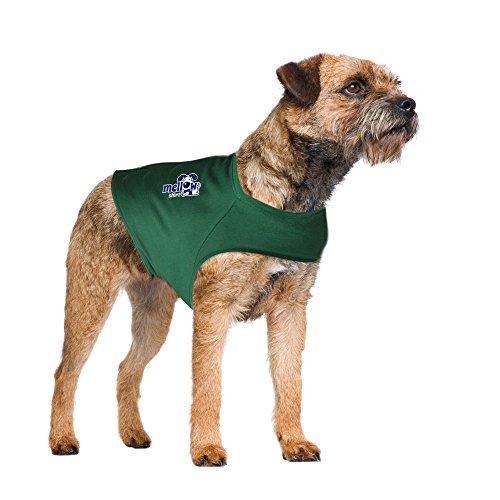 Mellow Shirt Dog Anxiety Calming Wrap, Medium, Cypress