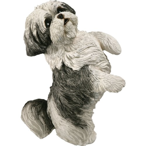 Sandicast Original Size Silver and White Shih Tzu Sculpture, Sitting Pretty (Sitting Life)