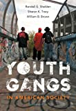 Youth Gangs in American Society