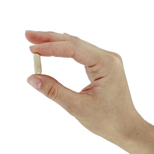 Now Foods - Olmo, 400 mg, sin gluten y soya, 100 cápsulas: Amazon.es: Salud y cuidado personal