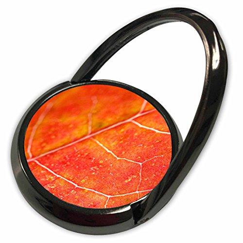 3dRose Yves Creations Colorful Leaves - Orange Leaf - Phone Ring (phr_36747_1)