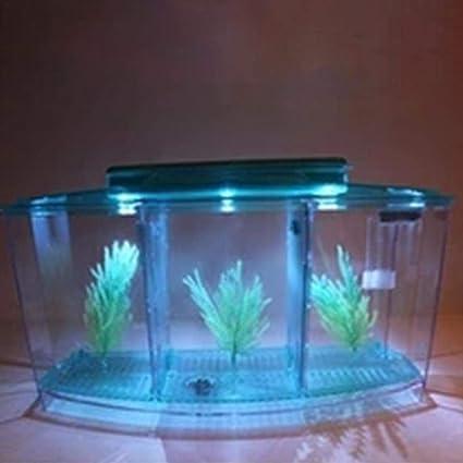 RONDAA Acuario de Luz LED Mini Tanque de Pesca Acrílico Tres Zonas Triple Curva de Aislamiento para Goldfish: Amazon.es: Productos para mascotas