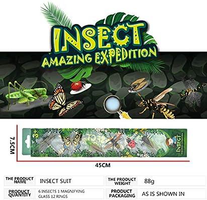 Amazon.com: wuliLINL 6 piezas insectos salvajes modelos ...