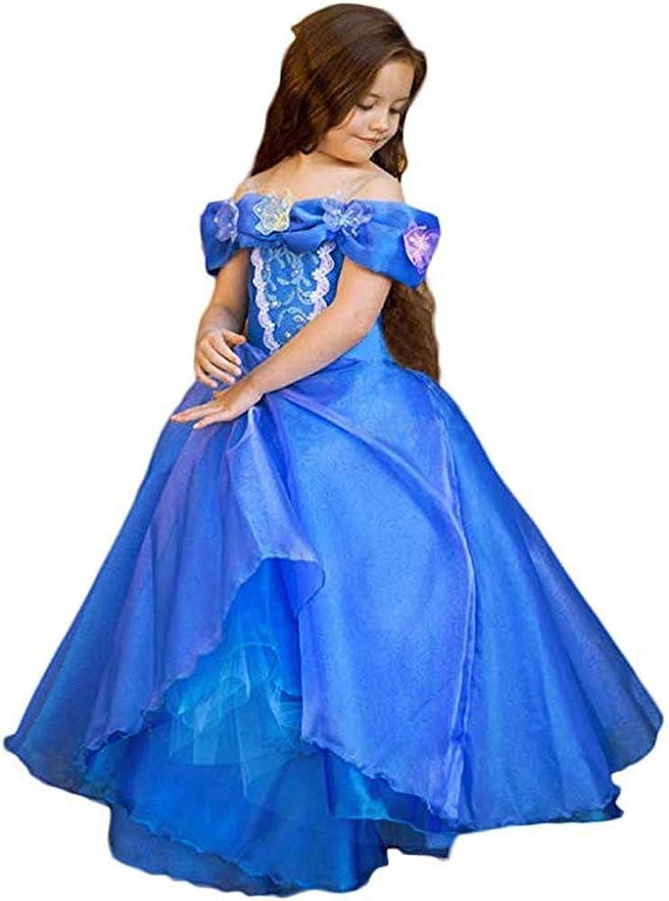 Auxico Vestido de Cenicienta Traje de Princesa Vestido de ...