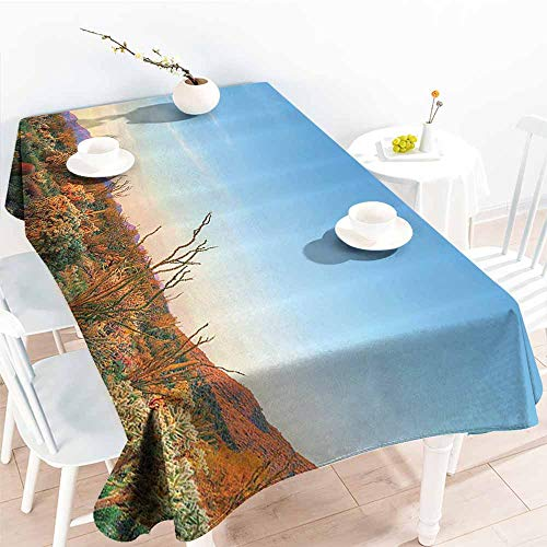 Homrkey Rectangular Tablecloth Saguaro Cactus Decor Sun Goes
