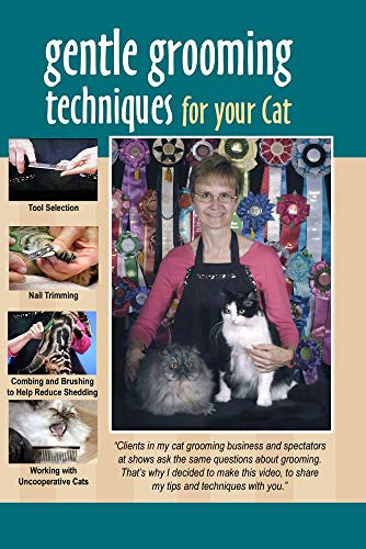 Gentle Grooming Techniques for Cats
