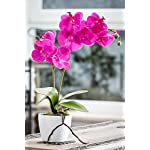 Deutschmade-Artificial-Flower-Pink-Orchid-Phalaenopsis-Including-White-Ceramic-Vase-24-Inch-Pink