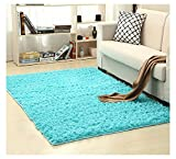 Ultra Soft Bedroom Carpet,Decorative Sitting Room Shaggy Area Rug, Fluffy Kids Playing Pad with Anti-Slip Bottom,Water Absorbent & Quick Dry Area Rug (Turquoise,19'' x 47'')