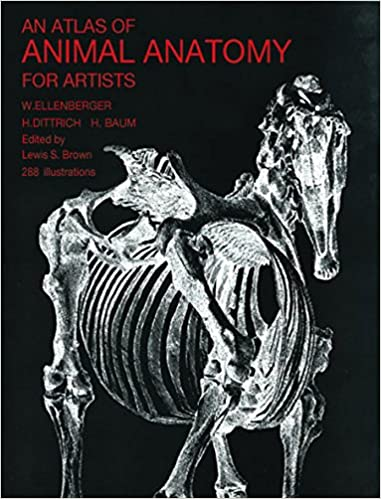 An atlas of animal anatomy for artists dover anatomy for artists an atlas of animal anatomy for artists dover anatomy for artists 2nd ed edition kindle edition fandeluxe Choice Image
