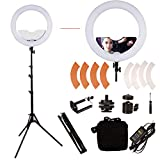 Photo : GINSON 18 inch 240 LED Ring Light Mirror Make Up Beauty Light with Stand for Wedding Photography, Beauty Light, Night Video