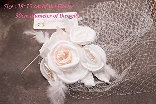 Kercisbeauty da sposa in pizzo champagne veil Drop wedding Face Birdcage veil con pettine Wide Lace veil Chapel veil Single Layer veil matrimonio accessori per capelli con fiori di rosa fiore