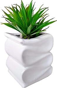 Succulent Planter White Ceramic Container Icing Cactus Pot Frosting Flower Box Indoor Herb Garden House Plant Outdoor Window Planter Rectangle Flower Pot Succulent Terrarium