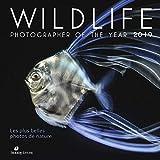 Wildlife Photographer of the Year 2019 : Les plus belles photos de nature
