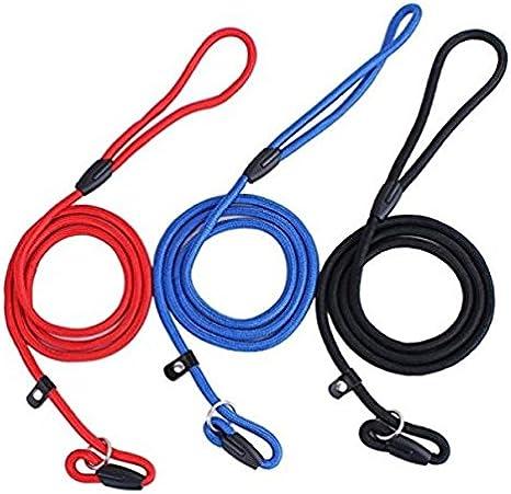 Doitsa - 3 cadenas para perros, correa de nailon, correas para perros, suministros para mascotas, 3 colores