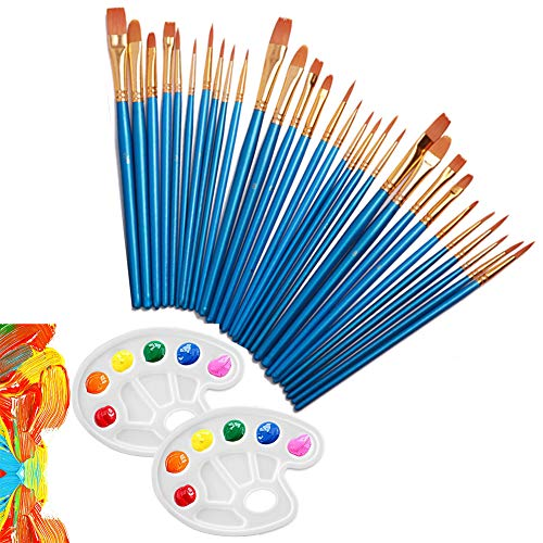 (ZTWEDEN 30 Pieces Nylon Hair Paint Brushes Set with 2 Pieces Palettes for Watercolor Oil Paintings Acrylic Paintings Ceramic Artist Professional Paintbrush Kits)