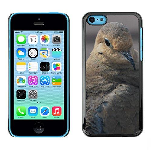 Premio Sottile Slim Cassa Custodia Case Cover Shell // F00019108 Brown oiseau // Apple iPhone 5C