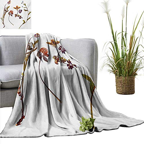 AndyTours Summer Blanket,Flower,Book Dried Cute Flowers Lilacs Daisies Tulips Leaves Garden Plants Buds Art Print,Multicolor,Lightweight Breathable Flannel Fabric,Machine Washable 60
