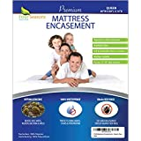 Four Seasons Essentials Queen Mattress Protector Bedbug Waterproof Zippered Encasement Hypoallergenic Premium Quality Cover Protects Against Dust Mites Allergens