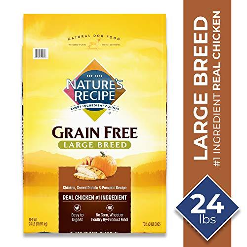 Nature's Recipe Large Breed Grain Free Dry Dog Food, Chicken, Sweet Potato & Pumpkin Recipe, 24-Pound