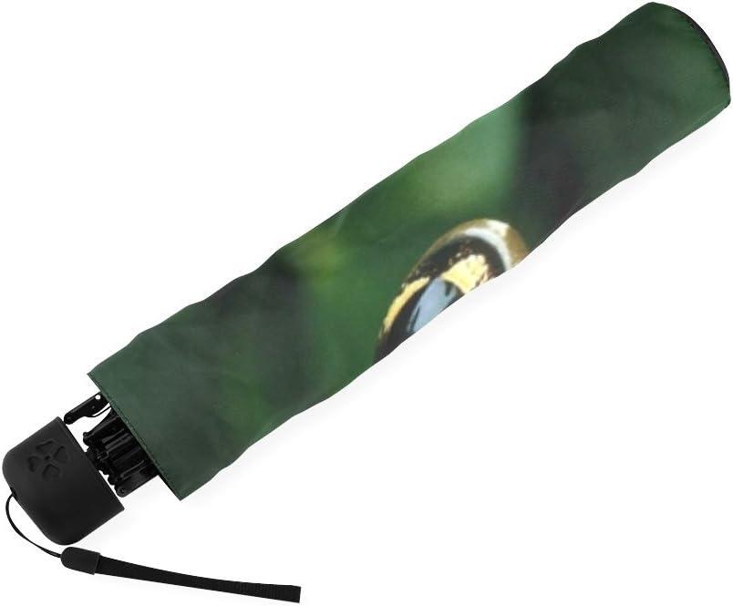 Custom Cute Colorful Tree Frog Compact Travel Windproof Rainproof Foldable Umbrella