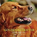 Golden Retriever Calendar 2017: 16 Month Calendar