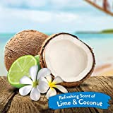 TropiClean Lime & Coconut Deodorizing Spray for