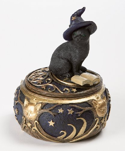 Dr. Hemp Magical Black Cat Sorcerer Witch Hat with Spell Book Trinket Box Secret Stash 5