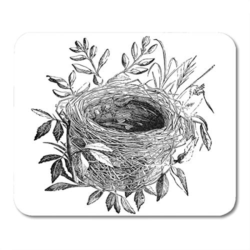 Antique Warbler - Emvency Mouse Pads Nest of Sedge Warbler Bird Vintage Sourced from Antique Book The Playtime Naturalist by Dr J E Taylor Mousepad 9.5