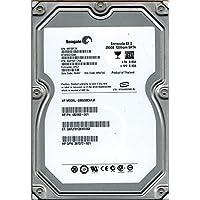 Seagate ST3250310NS P/N: 9CA152-784 F/W: HPG1 KRATSG 250GB