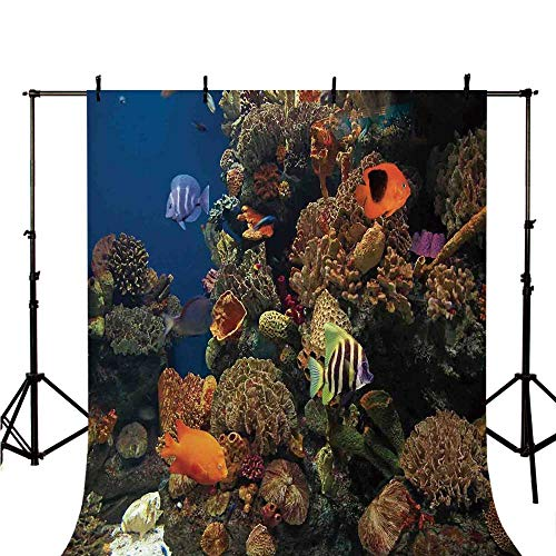 Ocean Stylish Backdrop,Undersea Wildlife Environment with Colorful Sponge Corals Tropic Fishes for Photography,39.3
