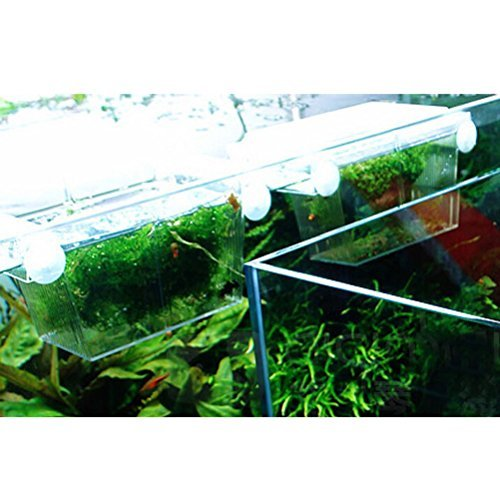 VORCOOL Fish breeding box Aquarium Self-floating Fish Breeding Isolation Box Breeder Hatchery Incubator (Transparent) (Isolation Box)