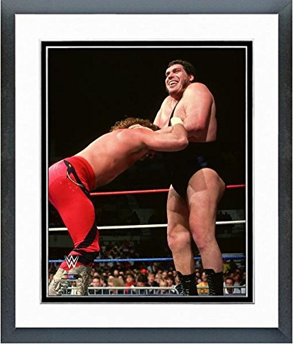 Andre the Giant WWE 1989 Action Photo (Size: 12.5