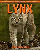 Lynx: Amazing Pictures & Fun Facts on Animals in Nature