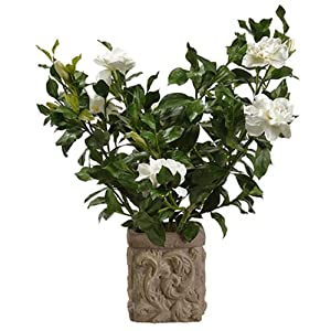26″ Silk Gardenia Flower Arrangement w/Stone Pot -Cream/Green