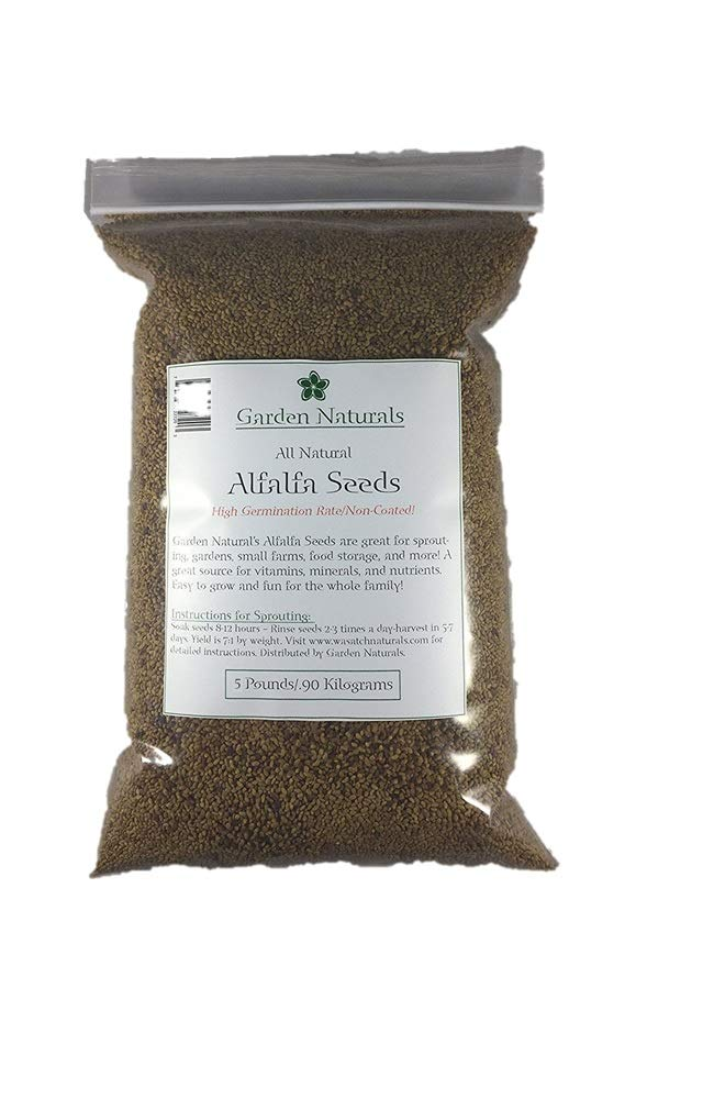 All Natural Alfalfa Seeds 10 Lbs Sprouting High Germination Chemical Free by Garden Naturals by Garden Naturals