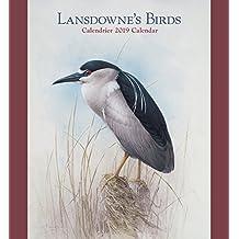 Lansdowne's Birds 2019 Wall Calendar