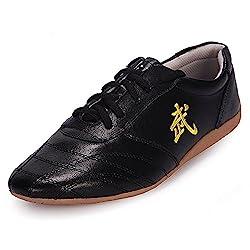 Bjsfxdkjyxgs Chinese Wushu Shoes Taolu Kungfu Shoes Practice Martial Arts Shoes Taichi Shoes For Men Women Adults Fashion Sneakers Us9 5 Eur44 27cm Black