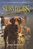 img - for Survivors: The Gathering Darkness #3: Into the Shadows book / textbook / text book