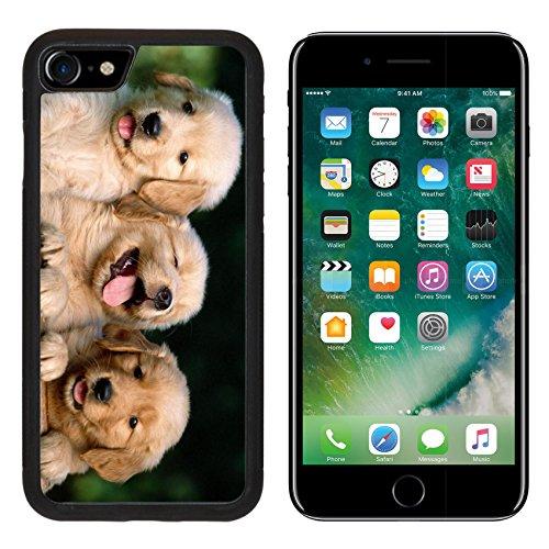 iPhone 7/7s Metal Phone Case,MSD Bumper Custom Alum Case Design for dog animal puppy canine cute pet portrait domestic adorable pedigree retriever doggy golden mammal purebred