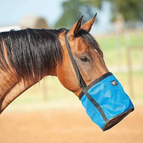 Cashel Feed Rite Bag Draft, Horse, Mini/Foal, or Pony Colors: Black, Blue, Orange or Pink (Feed Bag The)
