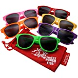 grinderPUNCH Kids Child Colorful Wayfarer Style Sunglasses UV400 Protection