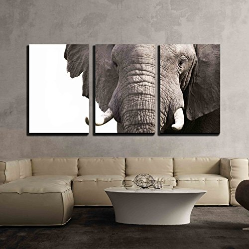 Old African Elephant (wall26 - 3 Piece Canvas Wall Art - Elephant - Modern Home Decor Stretched and Framed Ready to Hang - 24
